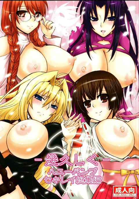 Kihisashiku - Honey Bump Sekirei Compilation Book